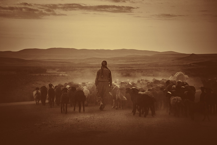 Herderscultuur Corona Veganisme