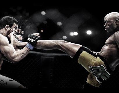 Wereld-van-MMA